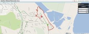 Bay Trail Hike June 6, 2013 - Hamilton Wetlands Restoration Area