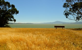 Gallery - Point Pinole