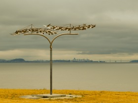 Gallery - Seal Point Park